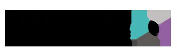 Schweizerischer Plattenverband
